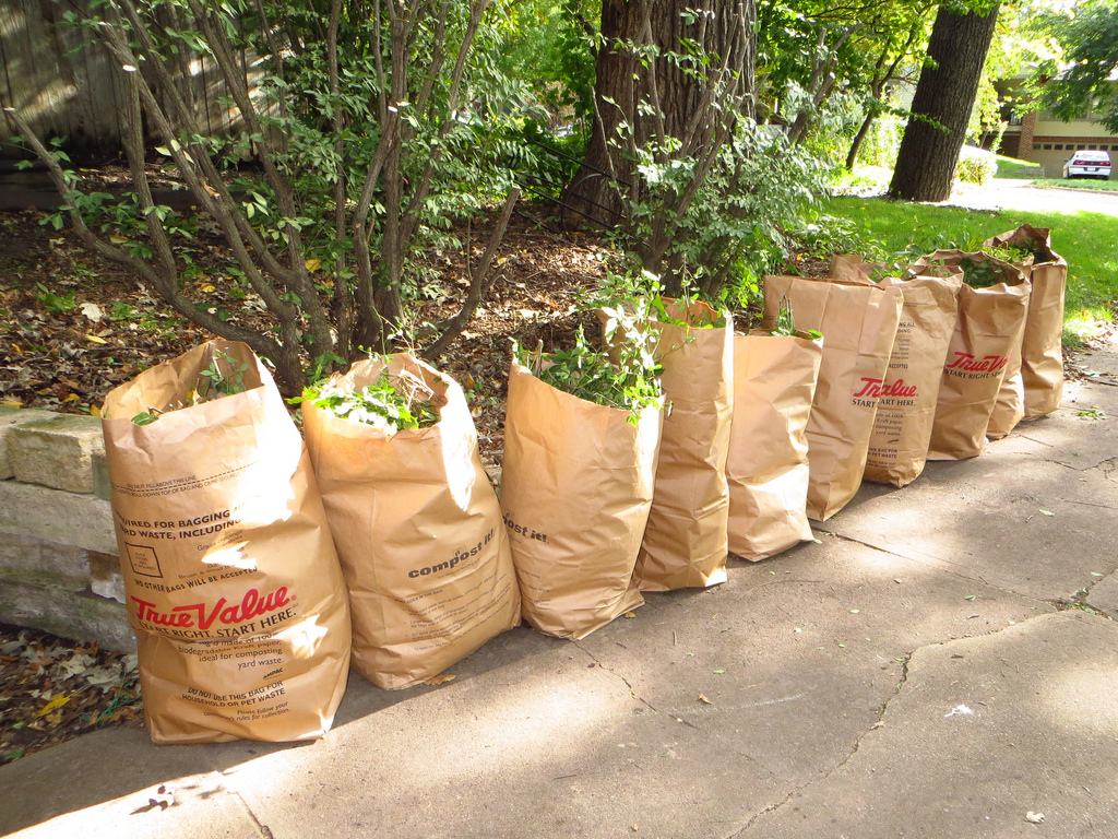 yard-waste-bags-flickr.jpg